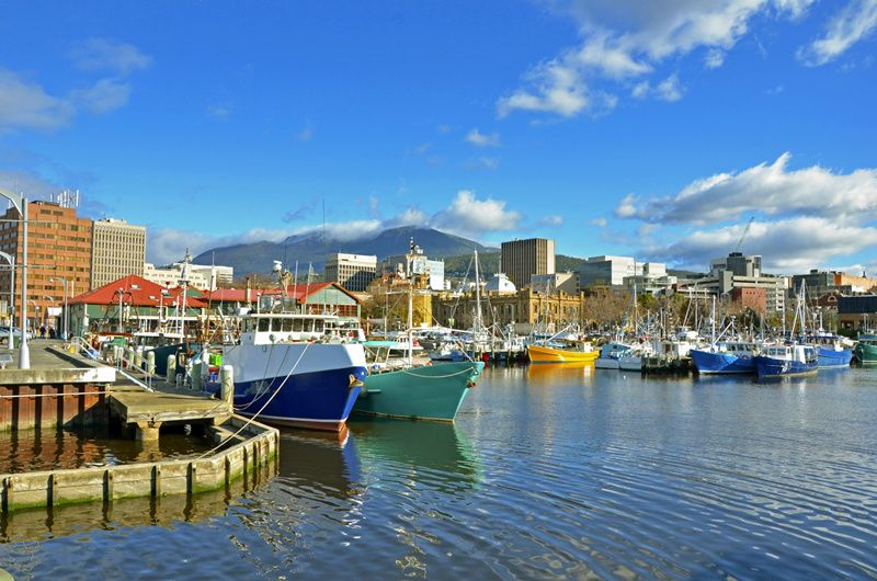 8-Day Ultimate Tasmanian Experience Tour