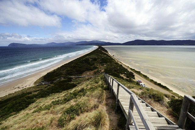 7-Day Best of Tasmania Experience Tour from Hobart
