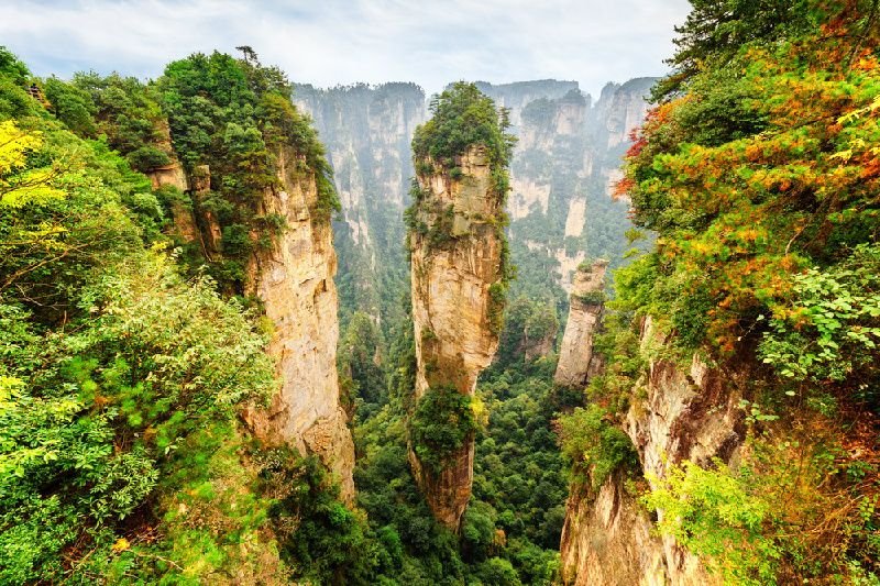 Zhangjiajie National Forest Park Small Group Tour