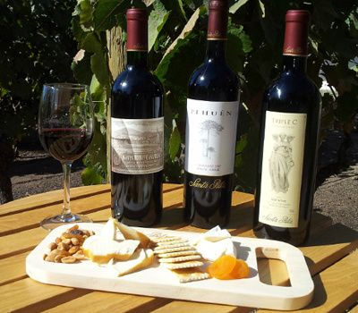 Private Santa Rita Winery Tour W/ Tastings