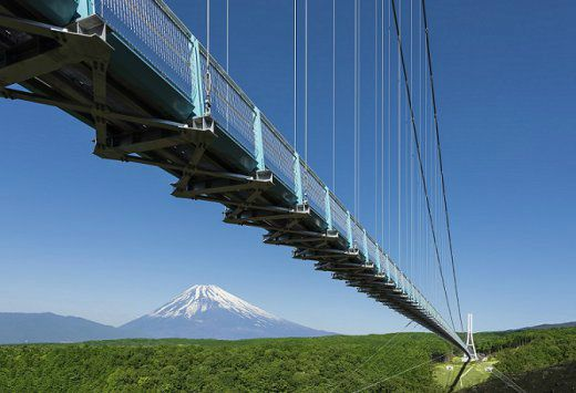 1-Day Mt. Fuji Tour with view from Mishima skywalk and Lake Ashi Private Ship Cruise