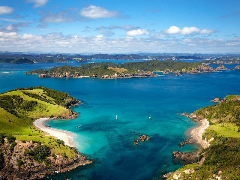 Bay of Islands Tour & Cruise