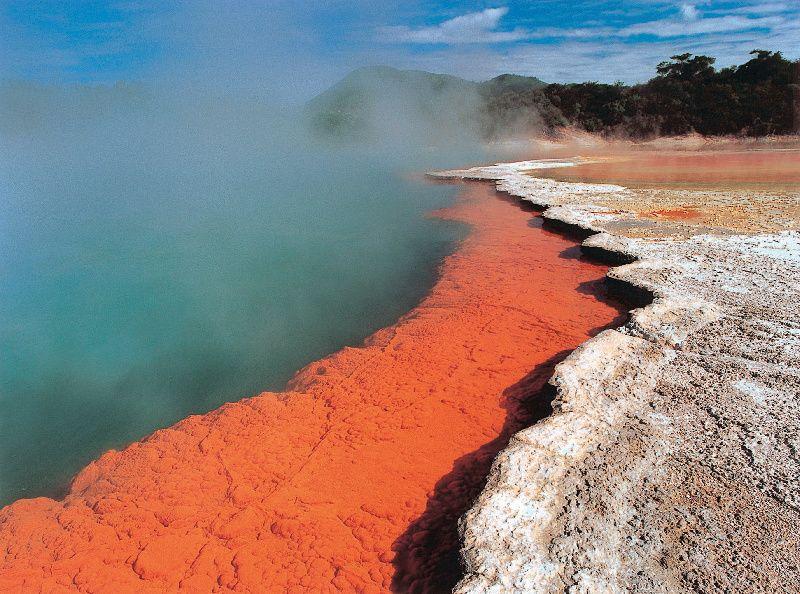 3-Day Wellington to Auckland Tour W/ Rotorua & Waitomo