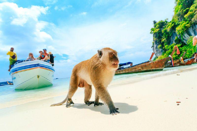 6-Day Bangkok to Phuket Tour