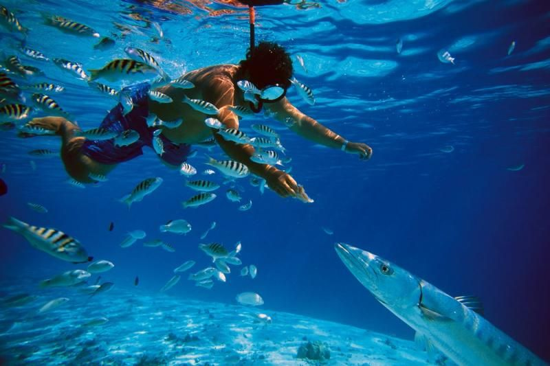 Reef Explorer Snorkeling & Kayaking Tour from Punta Cana