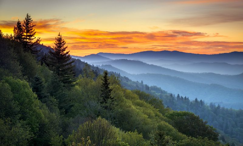 7-Day East Coast Tour From Atlanta W/ Great Smoky Mountains & Pigeon Forge