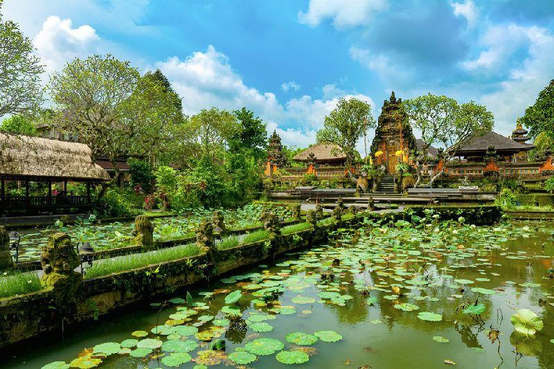 Herbal Walks in Ubud