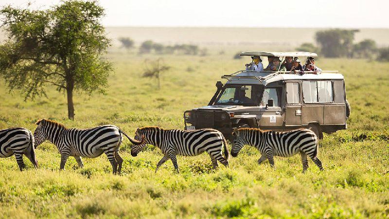 6-Day Masai Mara, Lake Nakuru & Amboseli Safari