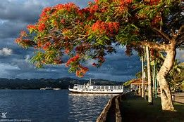 Private Suva City Tour