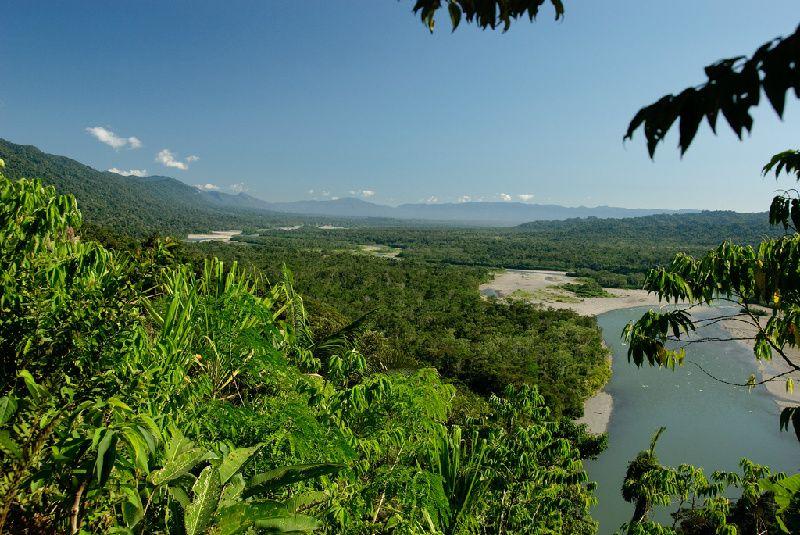 3-Day Manu Cloud Forest Tour
