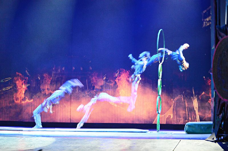 Beijing Acrobatic Show and Peking Duck Dinner