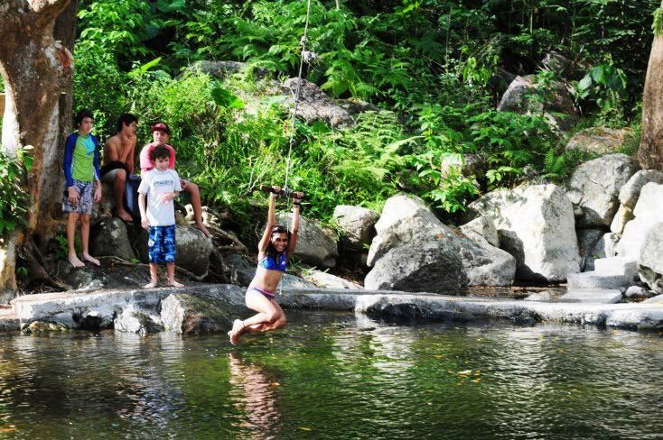 Zip Lining and Waterfall Tour from Coral Coast Resorts