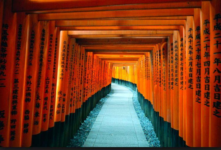 Kyoto Cultural Tour