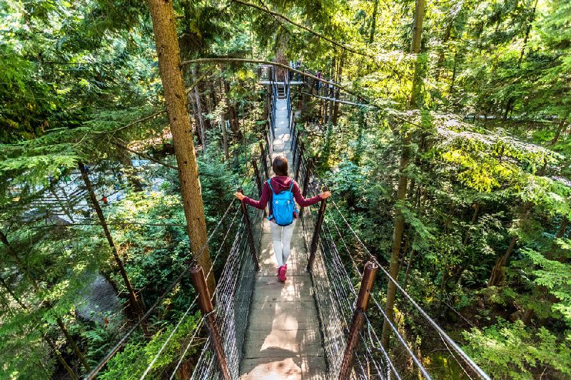 Vancouver City Tour W/ Capilano Suspension Bridge