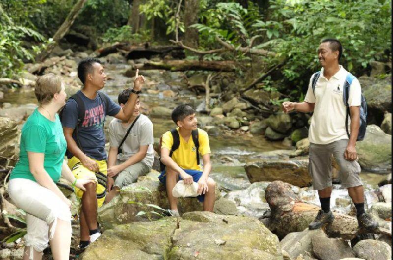 Rainforest Trek in Langkawi