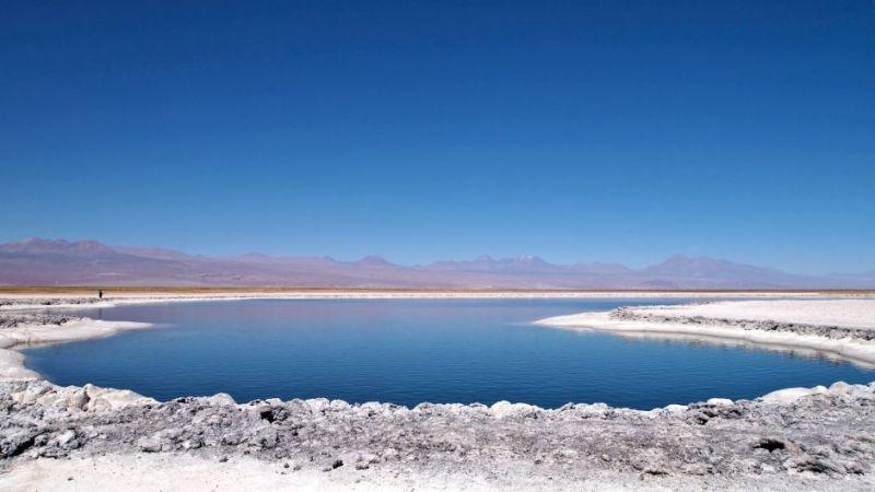Half-Day Cejar Lagoon Tour from San Pedro de Atacama