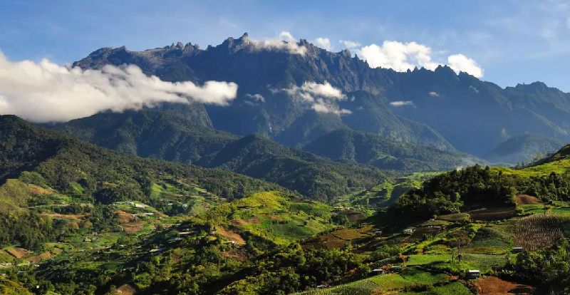 Kinabalu Park and Poring Hot Spring Day Tour