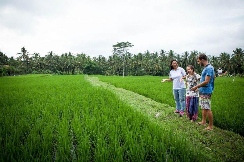 Ubud Heritage Food Tour
