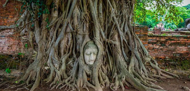 1-Day Tour to Ayutthaya with Sunset Boat Ride