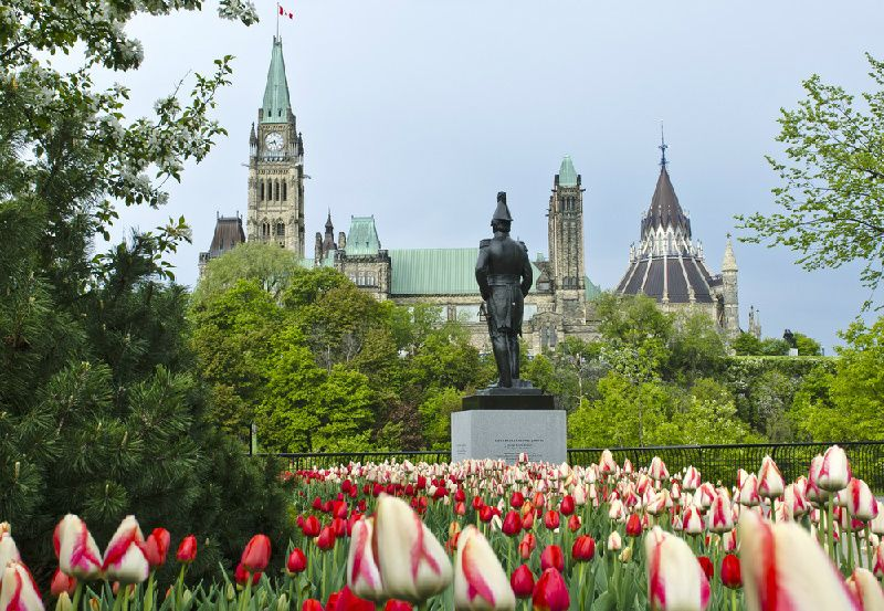 11-Day Canadian East Coast Tour with Toronto, Quebec, and Niagara Falls