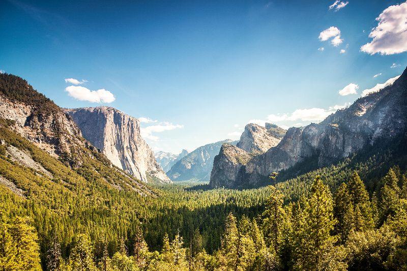 Yosemite National Park Bus Tour from San Francisco