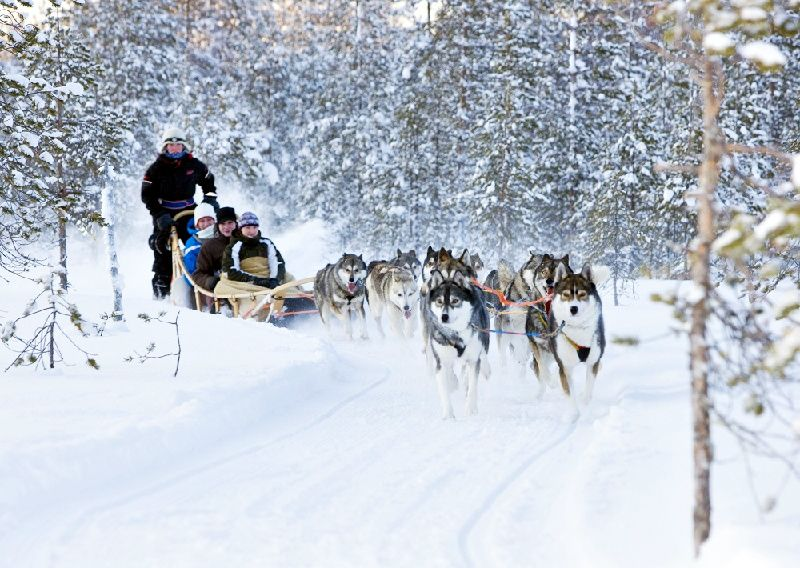 7-Day Finnish Lapland Winter Holiday from Helsinki