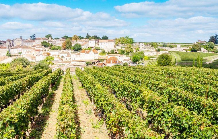 Saint Emilion Half Day Wine Tour from Bordeaux