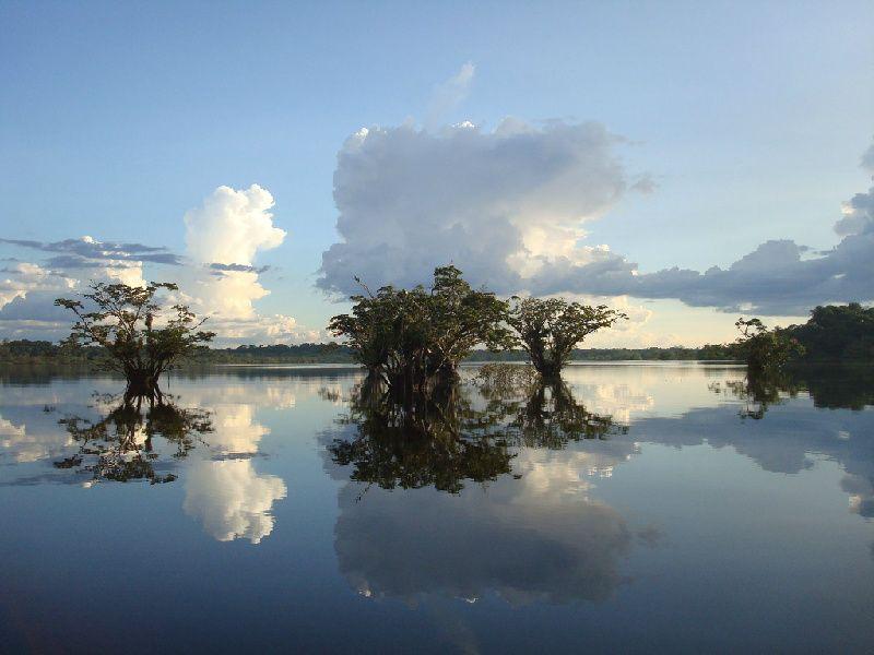 4 DayCuyabeno AmazonRainforest
