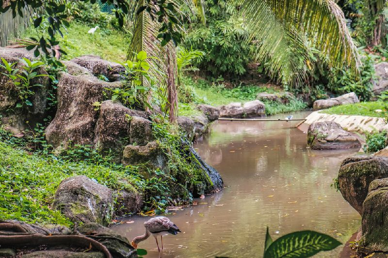 Kuala Lumpur Garden and Parks Tour
