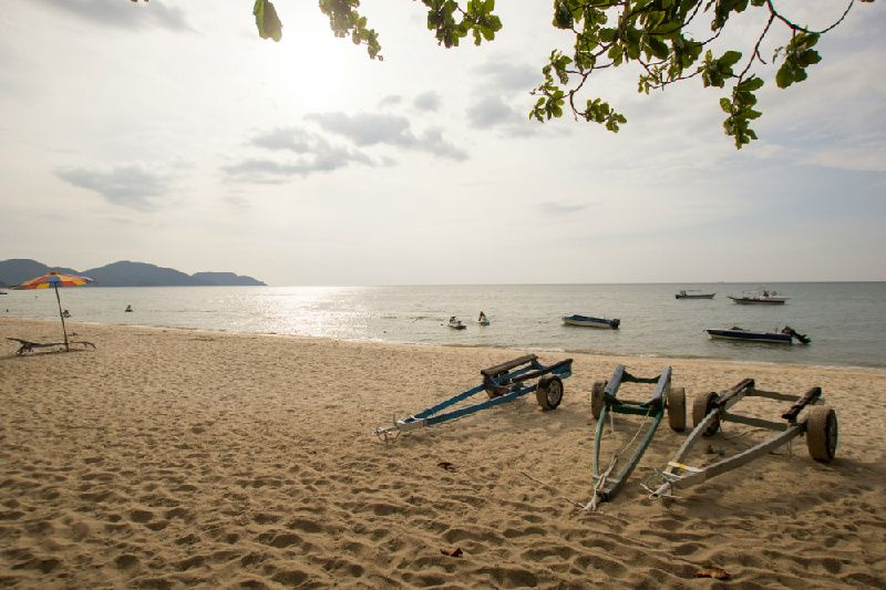 Penang Monkey Beach Excursion with BBQ Lunch Day Tour