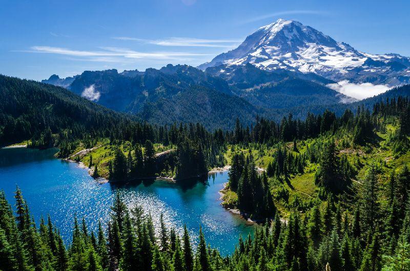 3-Day Seattle Tour: Seattle City Tour, Olympic National Park, Mt. Rainier National Park