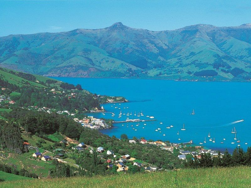 Christchurch Sightseeing Day Tour With Willowbank From Akaroa