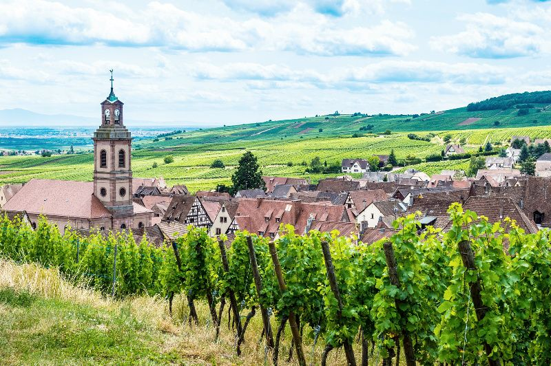 Alsace Wine Route Day Tour from Strasbourg