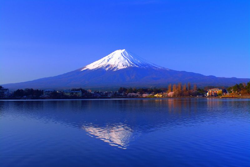 1-Day Mt. Fuji & Hakone Tour with Lunch
