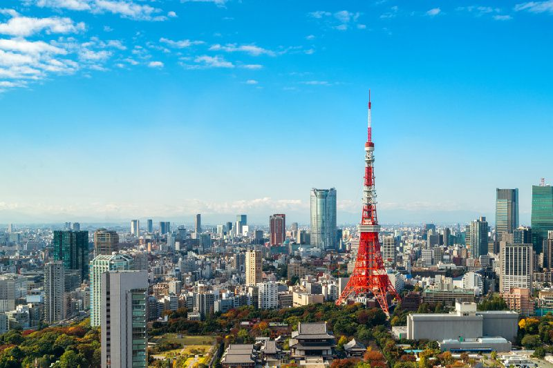 Half Day Bus Tour: Tokyo's Best Cherry Blossom Spots & Meguro River Cruise