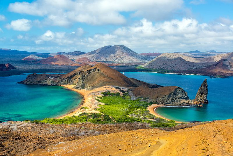 4-Day Galapagos the Best Tour Package: Santa Cruz, North Seymour or Bartolome Island, Plazas Island