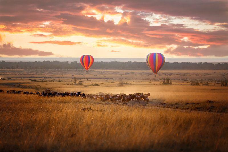 10-Day Kenya, Uganda, Rwanda Deluxe Tour