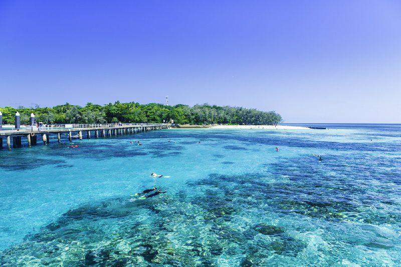 Great Barrier Reef Adventure From Hamilton Island