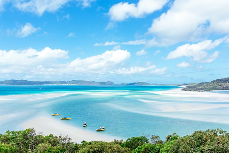 Half-Day Whitsunday Island Fishing Charter (AM)