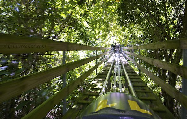 1-Day Mystic Mountain Jamaica Bobsled from Montego Bay