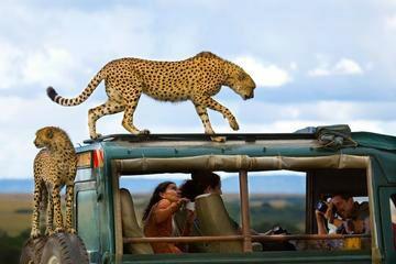 11-Day Fascination Kenya Safari - Nairobi