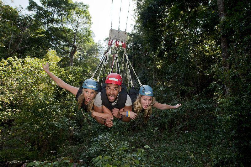 Cairns Giant Jungle Sunrise Swing W/ Breakfast