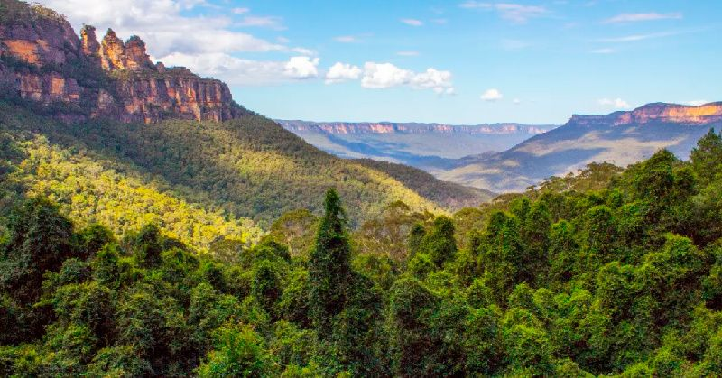 1-Day Blue Mountains in Style Full-Day Tour with Parramatta River Cruise