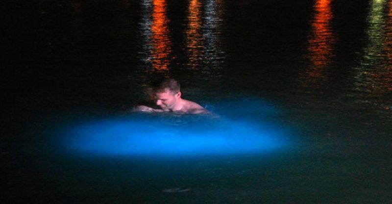 Luminous Lagoon Boat Tour from Ocho Rios