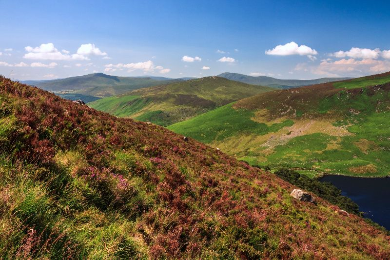 Wicklow and Glendalough Day Tour from Dublin w/ Baltinglass Abbey