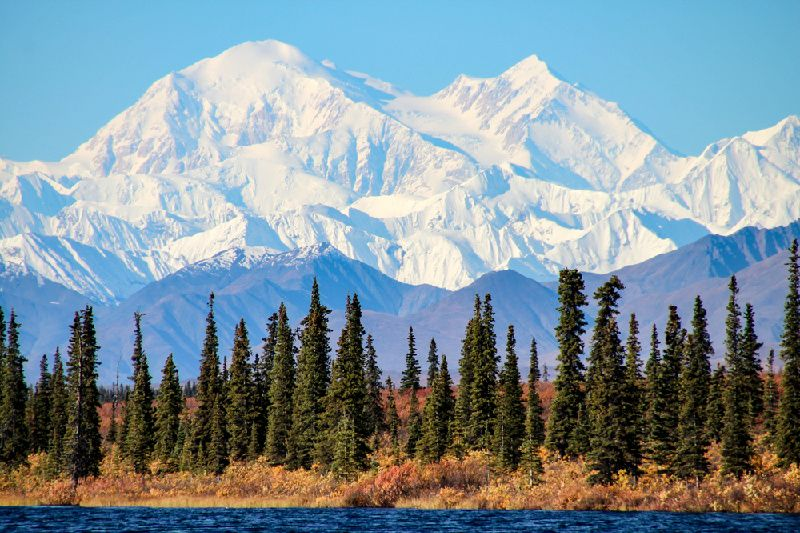 4-Day Alaska Aurora Tour from Fairbanks: Denali National Park & Chena Hot Springs Resort / With 3 Times Aurora Viewing