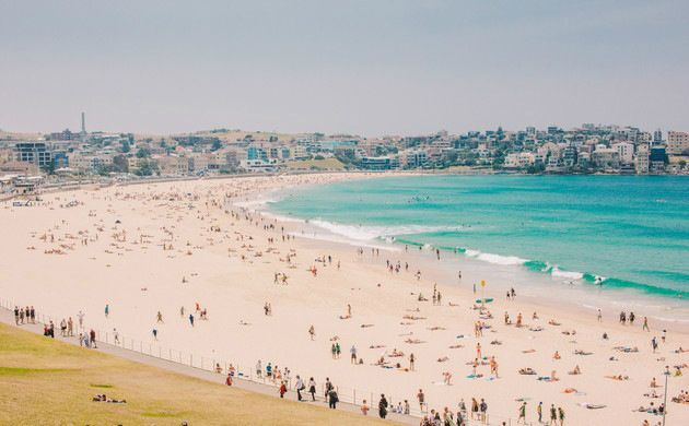 Bondi Beach and Sydney Sights Half-Day Tour