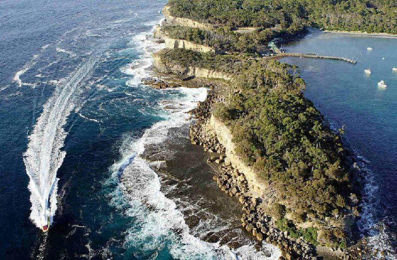 1-Day Tasman Island Wilderness Cruise Tour with Port Arthur Historic Site