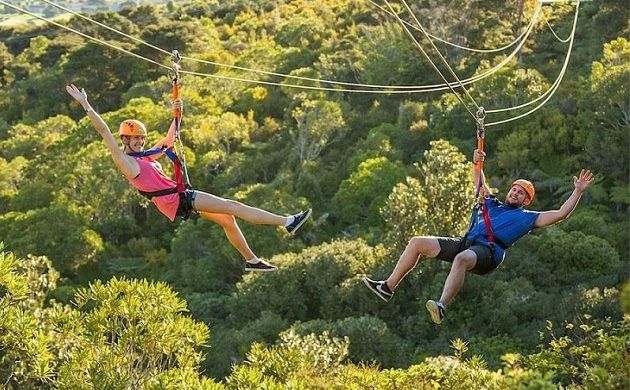 1-Day Auckland Waiheke Island Zip, Wine and Dine Coach Tour