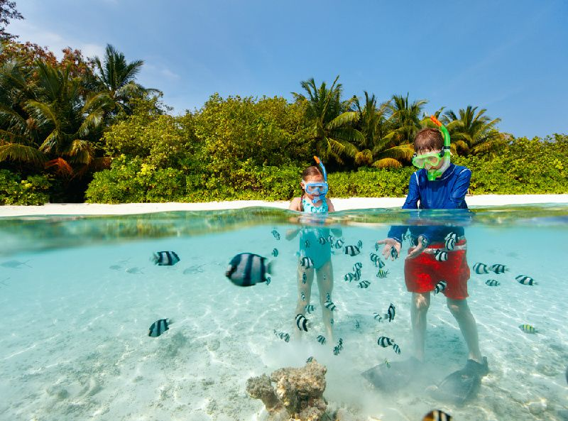 4-Hour Private Catamaran Snorkeling Excursion from Punta Cana
